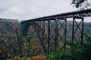 picture of bridge over trees